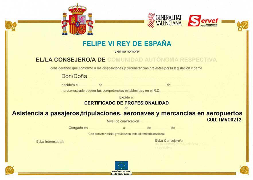Novedad 15 cursos homologados por el servef academia for Aula virtual fp valencia